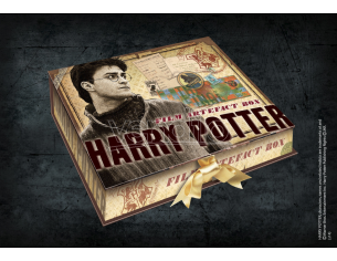 Harry Potter Box Da Collezione Repliche Artefact Noble Collection