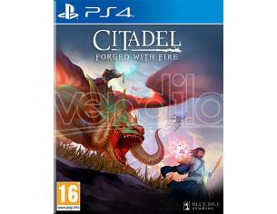 Citadel: Forged Con Fire Mmorpg - Playstation 4