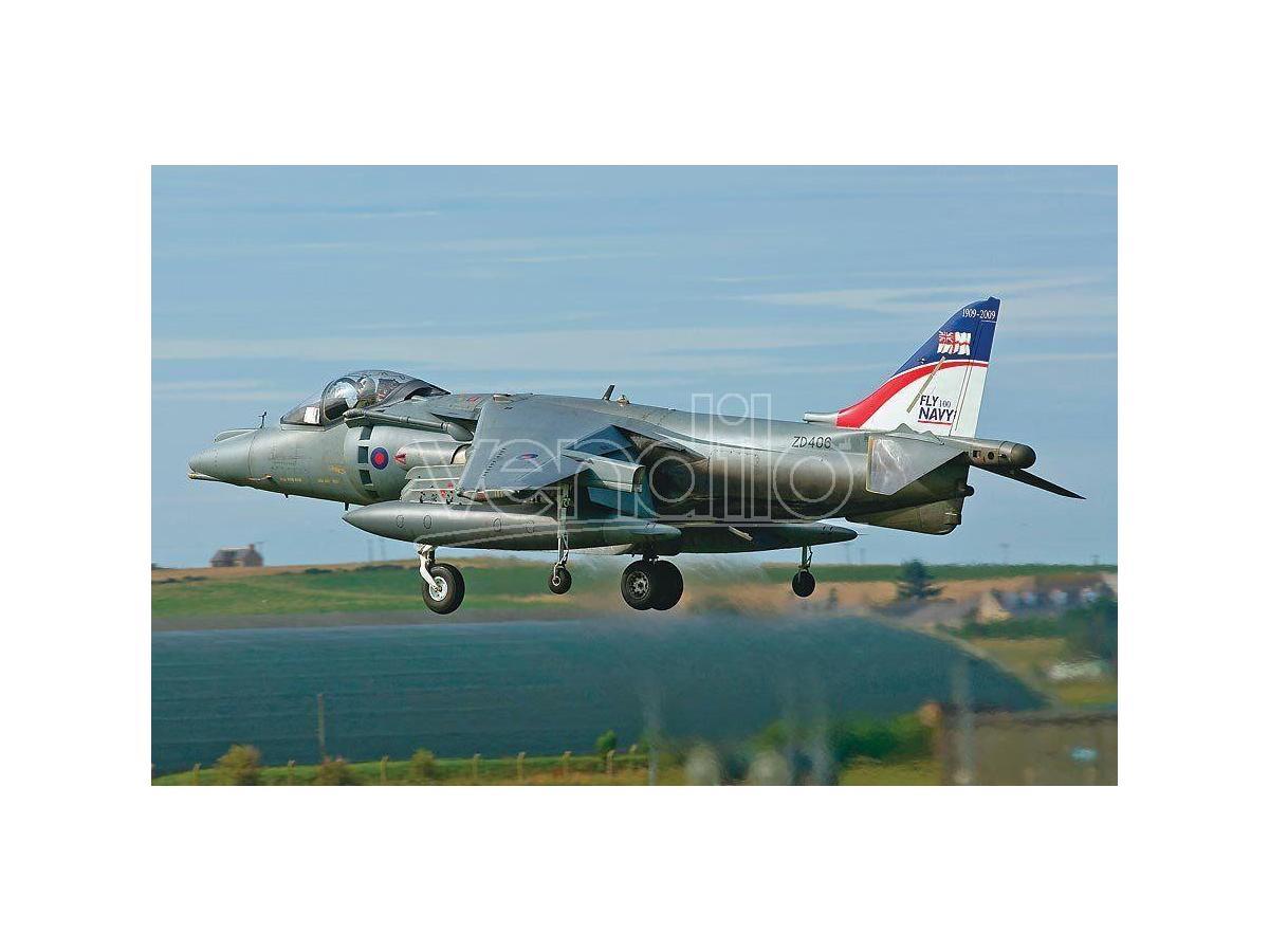 HASEGAWA 01923 HARRIER GR MK 9 FAA 100TH ANNIVERSARY 1:72 KIT Modellino